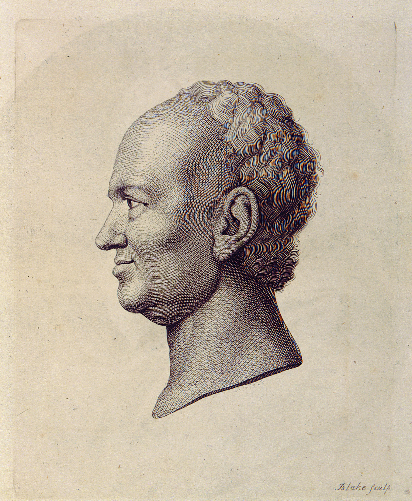 essays on physiognomy lavater summary Would have a high belief in physiognomy and reasoned that this belief would be   and pastor johann kaspar lavater (1783) published a series of influential  essays on  summary of means, standard deviations, and correlations  between.