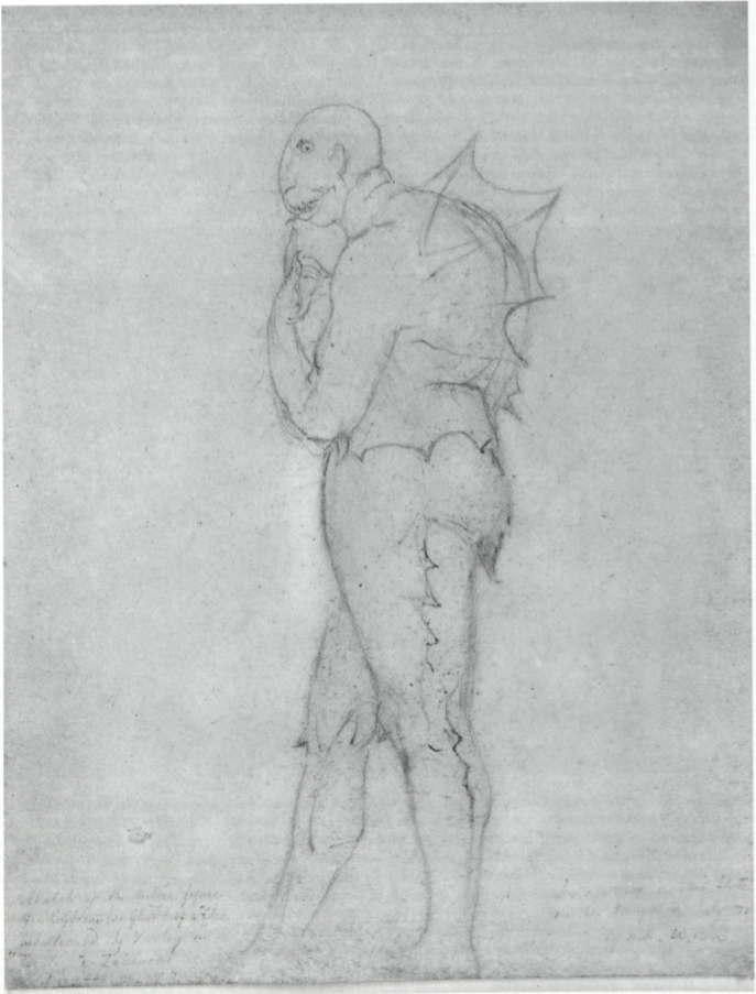 "Sketch of the entire figure                 of of the Emblem (or Ghost) of a Flea                 mentioned by Varley in                 ""Treatise on Zodiacal                 Physiognomy""                                  See a paper on this sketch                 in the Portfolio July 71                 by me W.B.S."